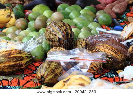 Cocoa Fruit ,jackfruit And Other Fruits