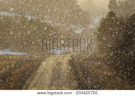 Light shines through snowy weather on a curved country road, backlit snow particles making image soft