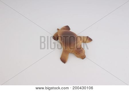 Plastic Sea Lion, Toy With Figure