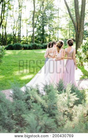 celebration, engagement, woman frienship concept. backs of four young slim women, happy bride in traditionaly white dress and her bridemaids, they are walking on the park full of trees and bushes