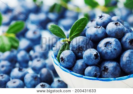 Blueberry or great bilberry in bowl with green leaves. Organic superfood and healthy nutrition.