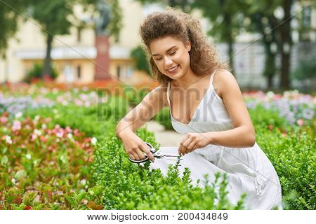 Attractive young woman smiling happily cutting trimming bushes at her garden copyspace working gardener gardening care hobby living lifestyle.