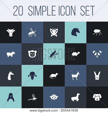Collection Of Lamb, Bunny, Camelopard And Other Elements.  Set Of 20 Zoo Icons Set.