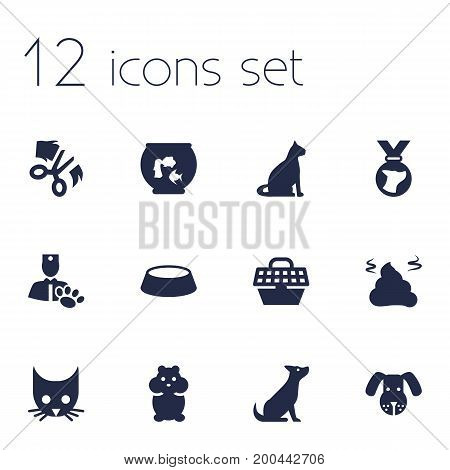 Collection Of Medallion, Pet Crate, Pile And Other Elements.  Set Of 12 Animals Icons Set.