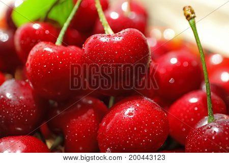 Fresh ripe cherries, close up