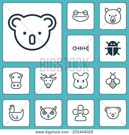 Nature Icons Set. Collection Of Toad, Kine, Marsupial And Other Elements