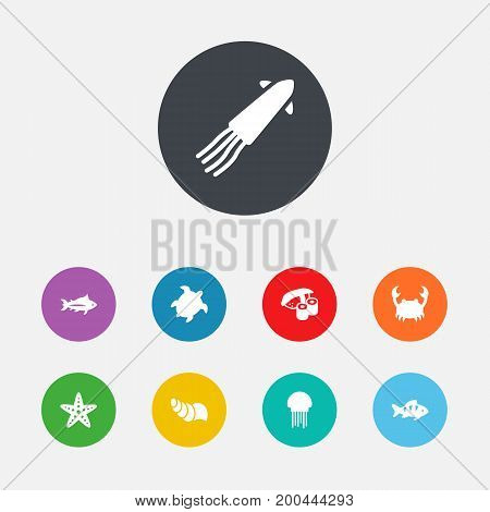 Collection Of Calamary, Medusa, Tunny And Other Elements.  Set Of 9 Food Icons Set.