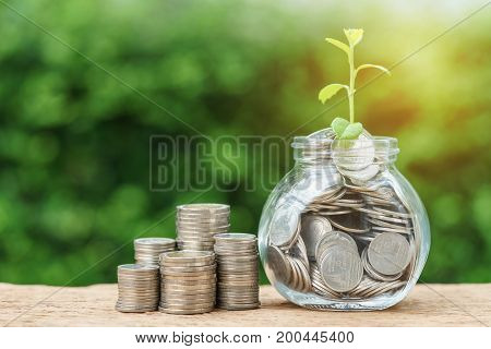 Stack of coins and jar with full of coins with growth sprout plant with artificial light as investment concept.
