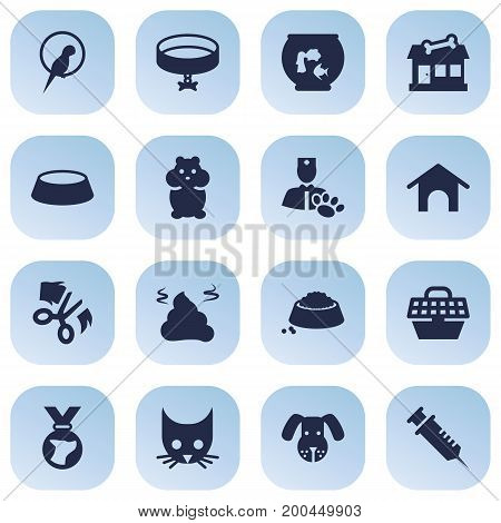 Collection Of Neckband , Medallion, Pile Elements.  Set Of 16 Pets Icons Set.