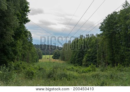 clearing for power lines in forest terrain.