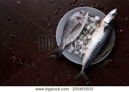 Seafood restaurant background. Fresh mackerel and dorado fish on ice platter on brown table. Organic cooking ingredients for healthy food. Top view, copy space