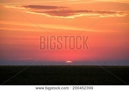 Skyline and sun setting or rising on orange background of savanna sunset