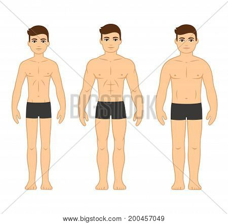 Male body types diagram: Ectomorph (skinny) Mesomorph (muscular) and Endomorph (stocky). Cartoon men in underwear vector illustration.