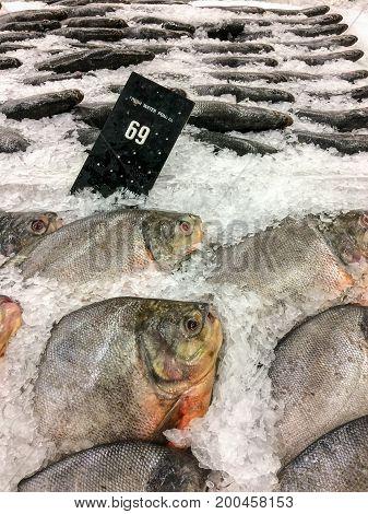 Freshwater pom fret frozen for sale in the bazaar