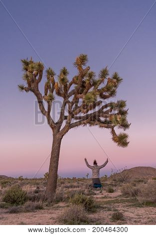 Leaping for Joy Under Joshua Tree at Dusk Vertical