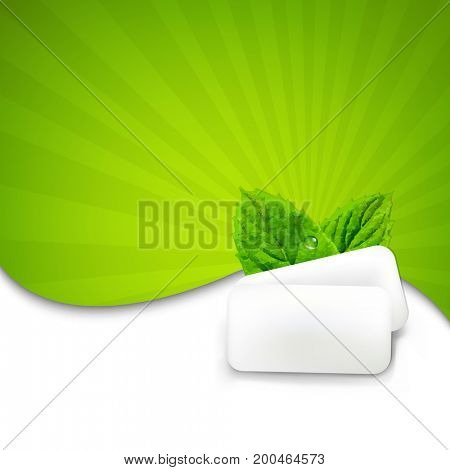 Mint Gum With Sunburst With Gradient Mesh, Vector Illustration