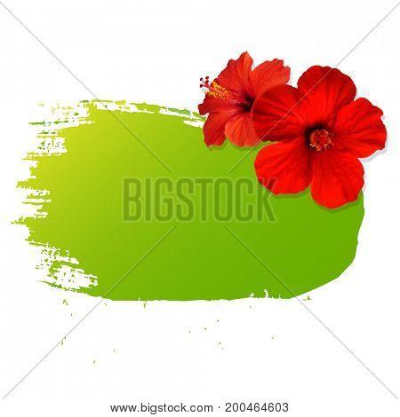 Summer Banner Blot With Flower