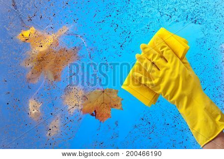 Hand In Rubber Glove Cleaning Window .