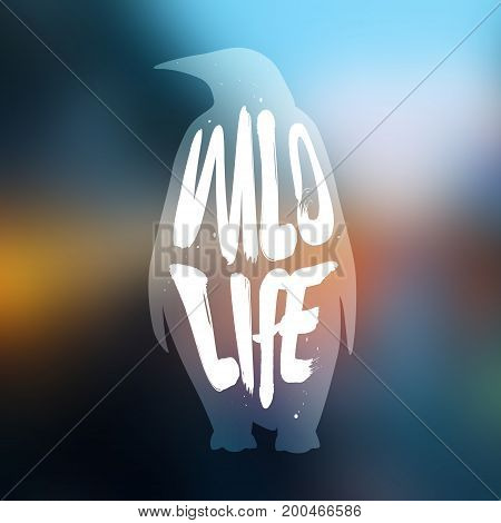 The silhouette of penguin with lettering text Wild Life on blur background. Vector illustration.