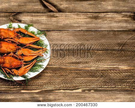 Boiled red crawfish on a white plate with green fennel on a white wooden background. Tasty red steamed rawfish closeup with  glass of beer on wood table, seafood dinner, nobody. Copy space for text.