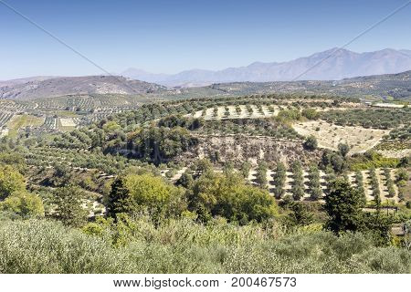 The panoramic views of the mountains, the olive groves in the countryside