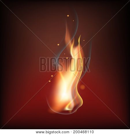 Realistic fire flame vector illustration. Warm brown background