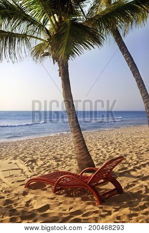 Wooden chaise longue under the palm tree on the ocean Kenya
