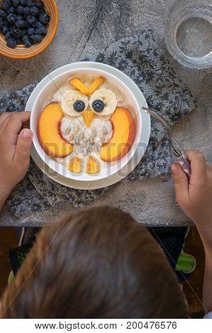 Kids breakfast oatmeal porridge with fruits look like cute owl