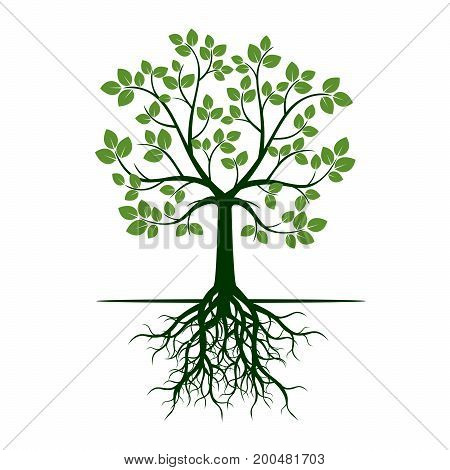 Green Tree on green background. Vector Illustration.