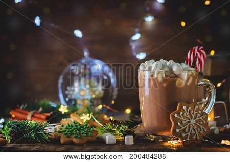 Cup of Cocoa with marshmallow and gingerbread cookie