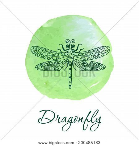 Hand drawn dragonfly in ornate zentangle style on watercolor spot.