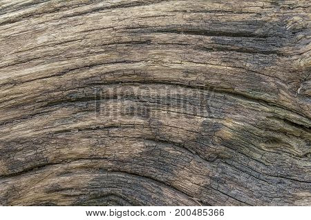 a full frame brown old fissured wood grain surface