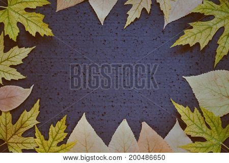 Toned Autumnal Background - Frame Of Autumn Leaves On A Dark Blue Background. Place For Text