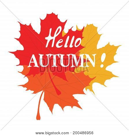 vector illustration of hello autumn background with maple leaves