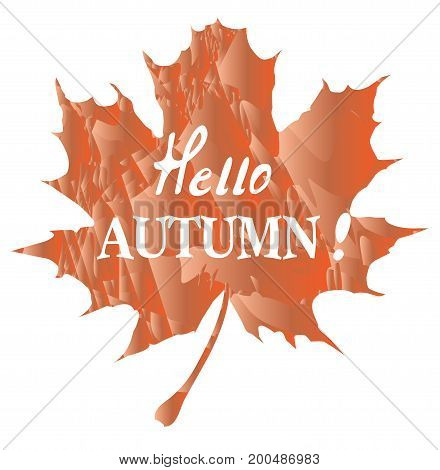 vector illustration of hello autumn background with autumn leaf
