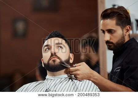 Young worker grooming customer's beard with scissors working in barbershop.