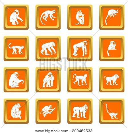 Monkey types icons set in orange color isolated vector illustration for web and any design