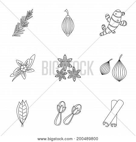 Spices icon set. Outline set of 9 spices vector icons for web isolated on white background