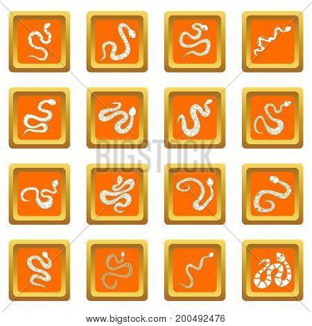 Snake icons set in orange color isolated vector illustration for web and any design