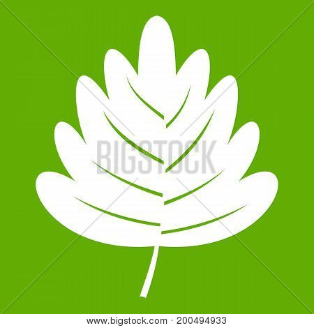 Hawthorn leaf icon white isolated on green background. Vector illustration