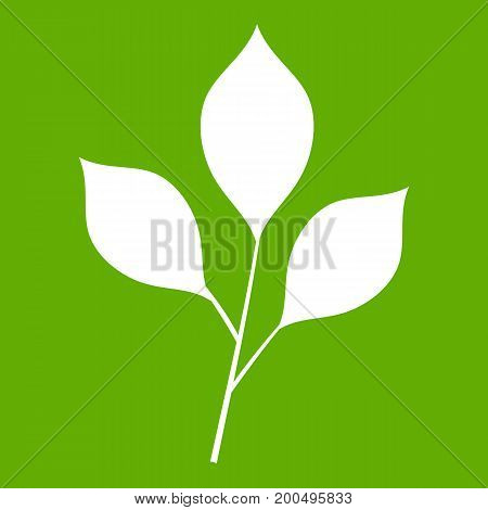 Cherry leaves icon white isolated on green background. Vector illustration