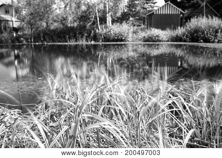 Counrtyside pond with dramatic reflections background hd