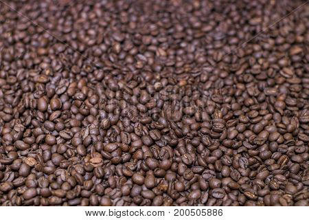 Brown roasted coffee beans grained arabica coffee background. Espresso dark aroma black caffeine drink. Closeup isolated energy mocha cappuccino ingredient.selective focus