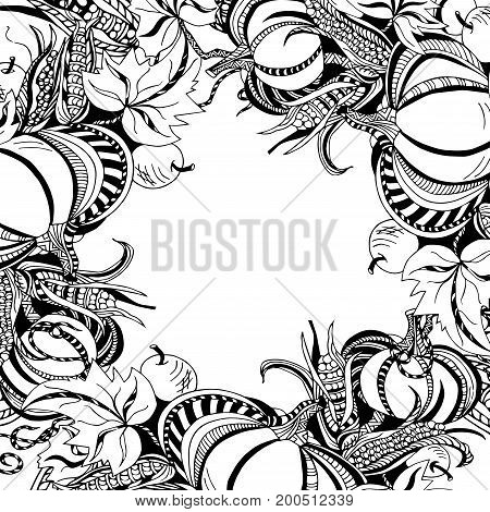 Black and white frame with pumpkins, leaves, apples and corn. Vector.
