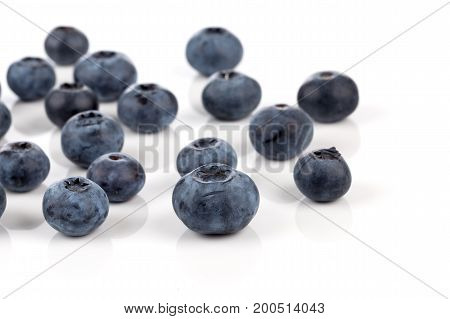 Blueberries Isolated Close Up