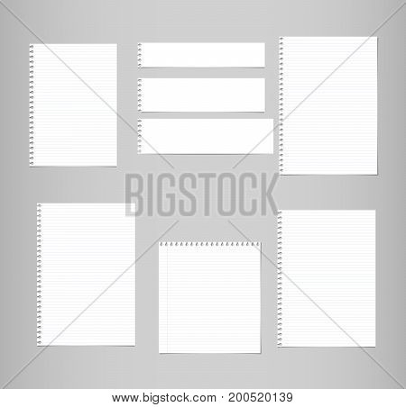 White ruled, lined note, copybook, notebook paper sheets stuck on grey background