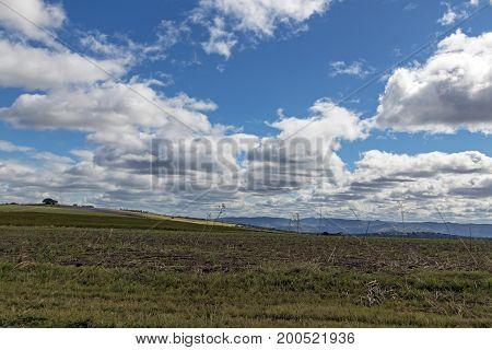 Winter Grassland Against Blue Winter Cloudy Sky Landscape