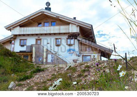 View of refuge through chamomile. Cinque Torri. Dolomites Italy