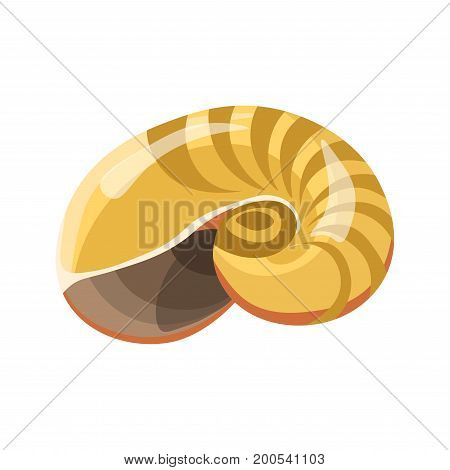 Shell or seashell and sea or ocean mollusk spiral curved shape with stripe pattern. Bivalve and gastropod shell different type vector isolated flat icon
