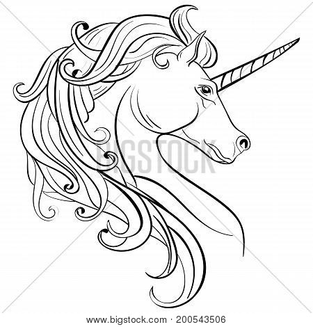 Sketch Unicorn hand drawn ink illustration.Unicorn horse animal.White mythical horse head with long horn. Mythic symbol of fantasy horse